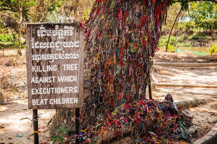 The Killing Tree In The Killing Fields